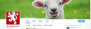 Ewe must be having a laugh...
